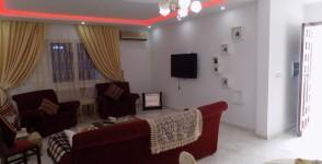 A louer appartement s+2 richement meublé