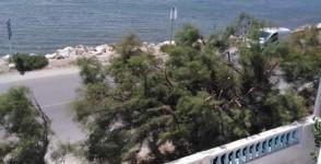 A louer villa meublé s+2 vue sur mer