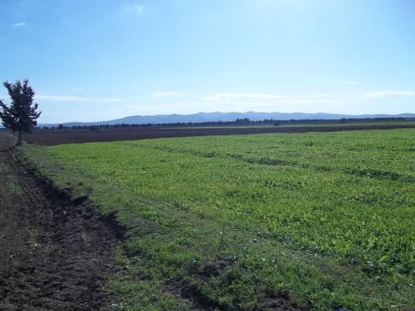 vendre terre agricole